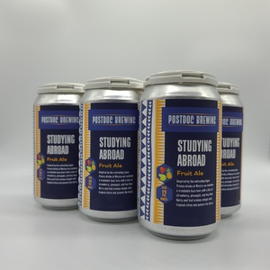 Studying Abroad Fruit Ale - 6pk 12oz Cans